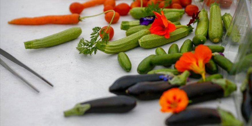 minyatür sebze meyve
