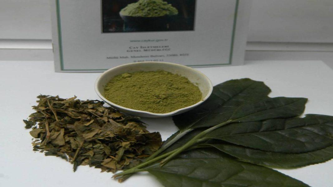 yeşil çay pudrası